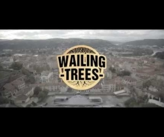 "Wailing Trees ""Lost"" official music video"