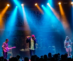 Fortunate Youth at San Diego's The Observatory North Park