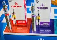 Kyle McDonald & friends perform Orchid Essentials relaunch