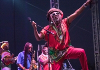 Steel Pulse at the Del Mar Races