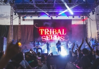 Tribal Seeds at the Del Mar Racetrack