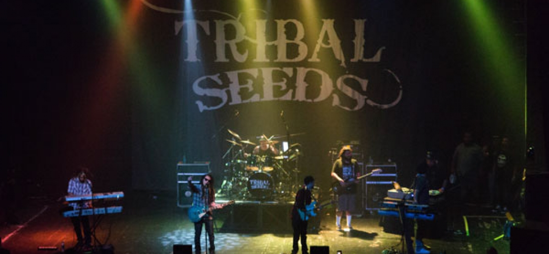 Tribal Seeds at the Majestic Ventura Theater