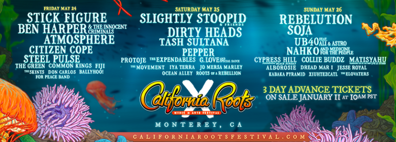 Cali Roots X final artists announced