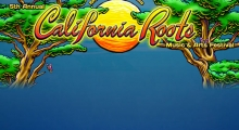 Countdown to the 5th annual California Roots Festival 2014