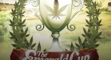 The Emerald Cup 2014 is here