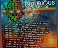 Indubious Summer Tour 2014