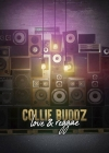 "Collie Buddz releases ""Love & Reggae"" single"