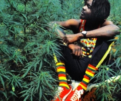 Celebrate 420 with Peter Tosh