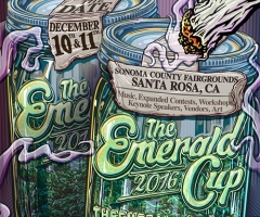 The 2016 Emerald Cup artist announcement