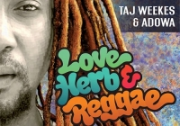 'Love Herb & Reggae' album coming from Taj Weekes