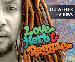"""Love Herb & Reggae"" album coming from Taj Weekes"