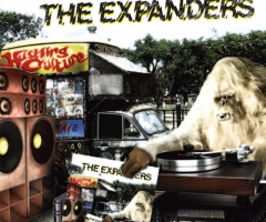 The Expanders 'Hustling Culture' album review