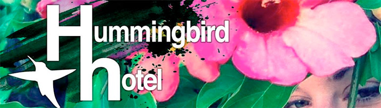 Hummingbird Hotel's debut single has us hooked