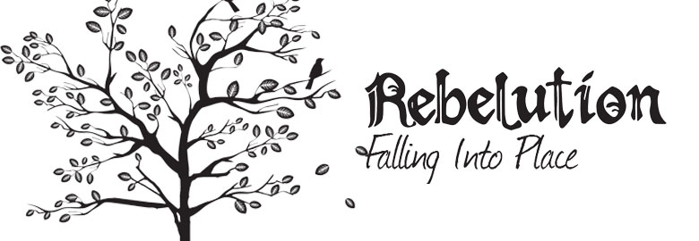 Rebelution 'Falling Into Place' album review